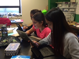 students learning on laptops